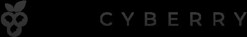 Cyberry-Digital-Architects-Webdesign
